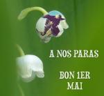 pixiz-30-04-2016-13-54-53.jpg