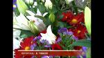 vlcsnap-2015-01-25-11h56m20s119.png